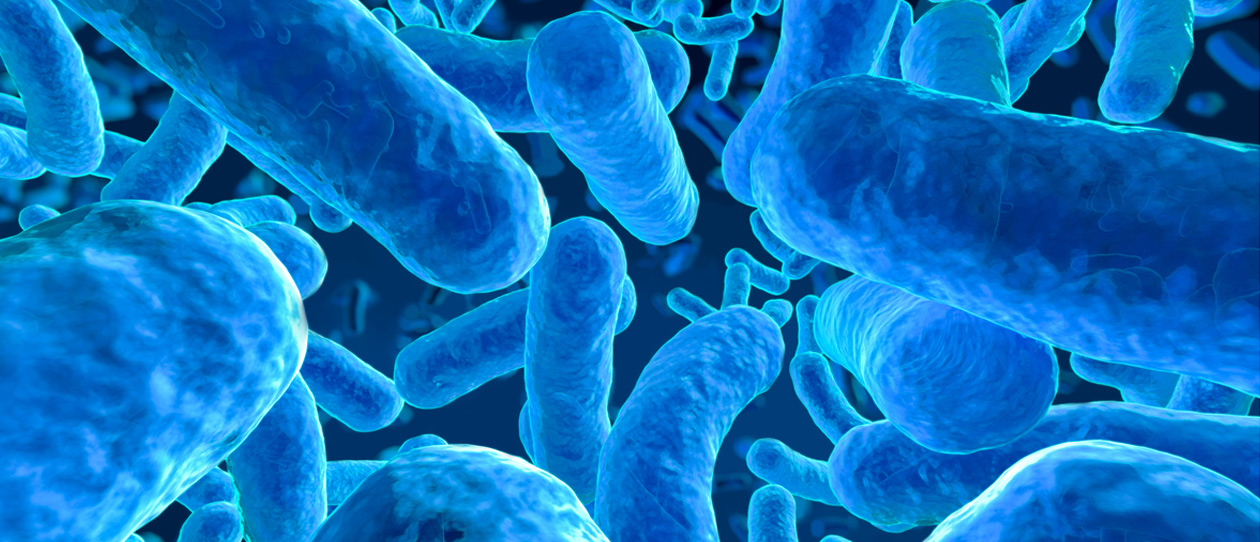 What is the gut microbiome?