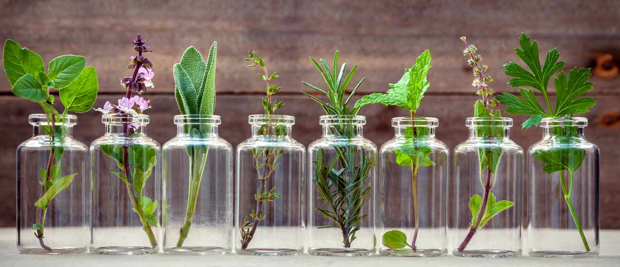What does a naturopath do? | Blackmores