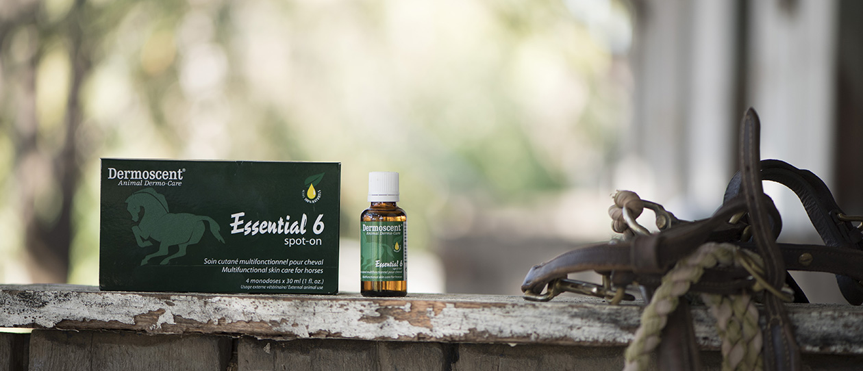 Dermoscent Essential 6 spot-on for Horses