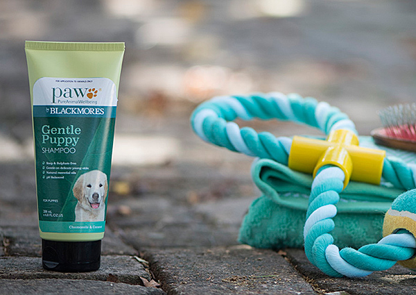Puppy Shampoo For Gentle Puppy Grooming Blackmores