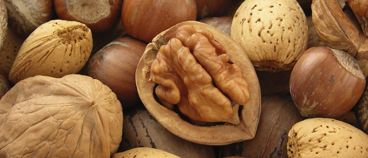 Why walnuts are a fertility superfood for men 1260x542