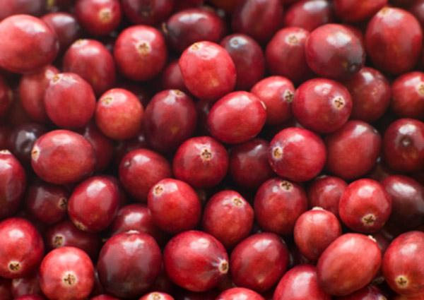 cranberry600x425